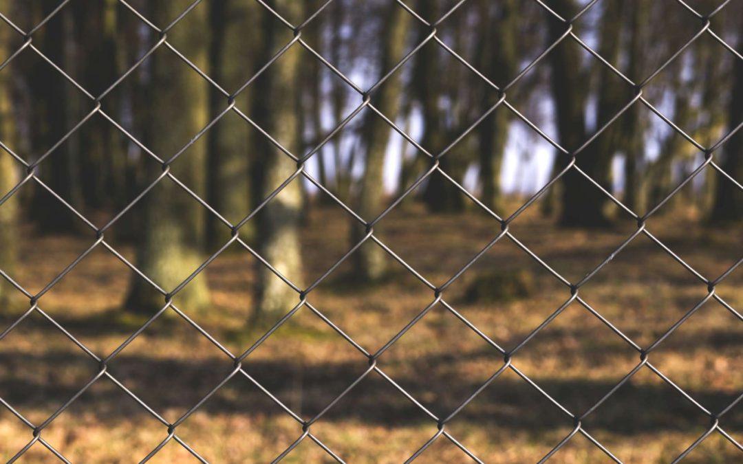 Haftungsregeln für Geschäftsführer und Vorstände